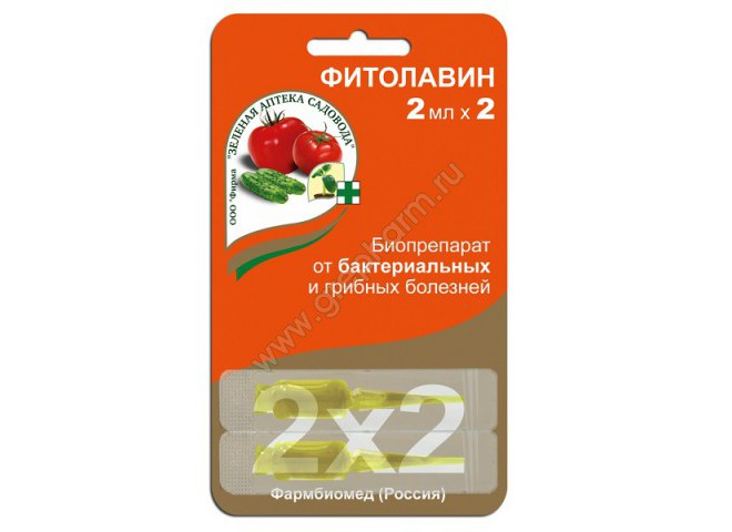 Фитолавин 2 ампулы по 2 мл
